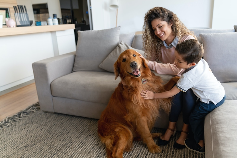 Portrait of a happy mother and son at home petting their dog and smiling – lifestyle concepts